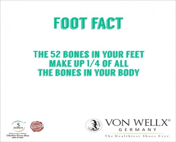 52 Bones in your Feet Fact